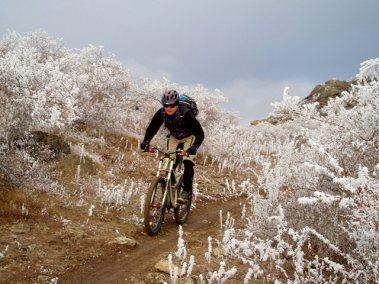 Central Otago Cycling