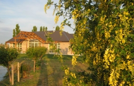 Aravin Home